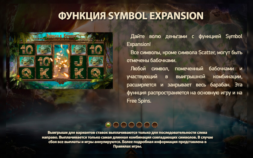 Бонусная игра jungle spirit или дух джунглей