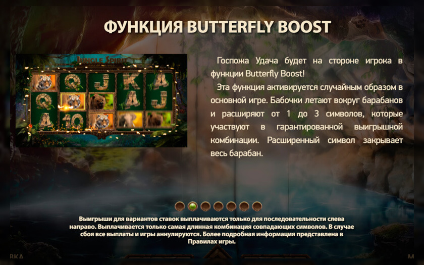 Символы jungle spirit или дух джунглей