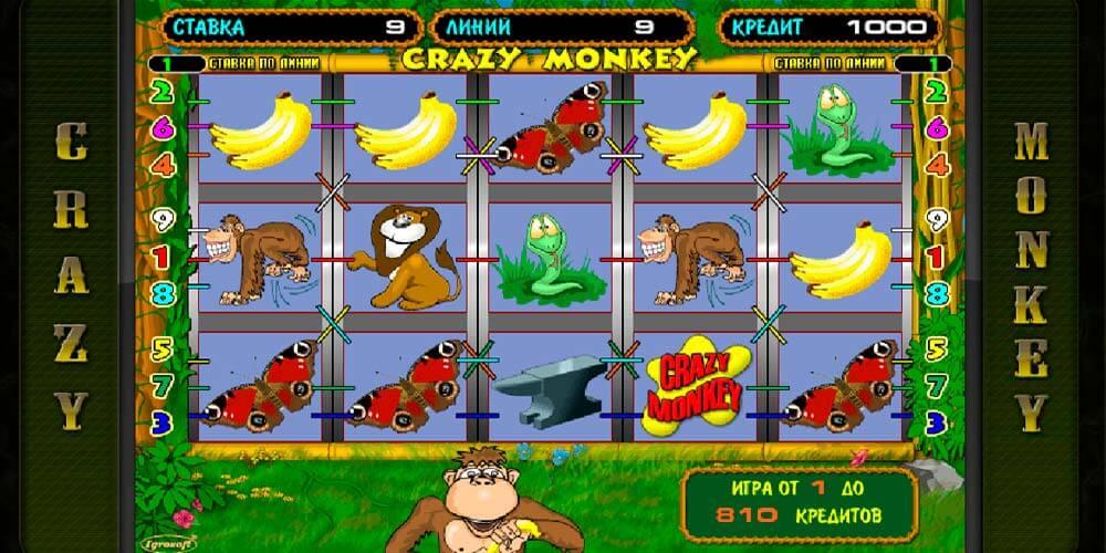Бесплатно скачать игровые автоматы crazi monkey как играть в пьяницы на картах