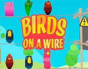Birds on a Wire / Птицы на проводе